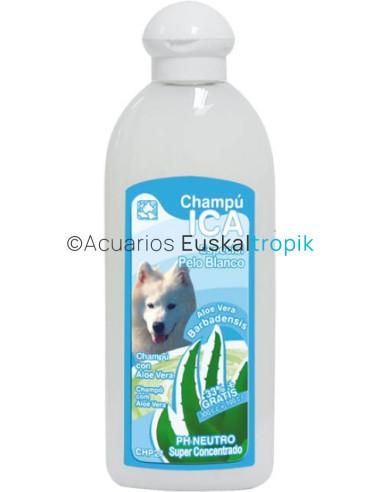 Champú pelo blanco ica