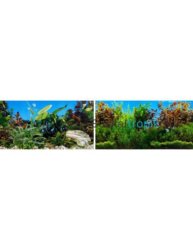 Poster plantas + plantas 2 caras 30cm