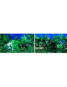 Poster plantas + plantas wave 2 caras 50cm