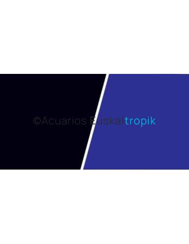 Poster azul con negro
