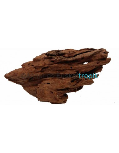 Tronco manglar Nº43 15cm