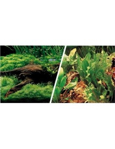 Poster dos caras tronco con plantas/plantas