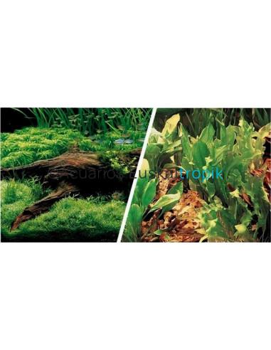 Poster tronco con plantas