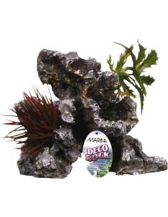 Roca con planta