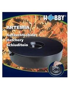 Hobby cuenco cría de artemia