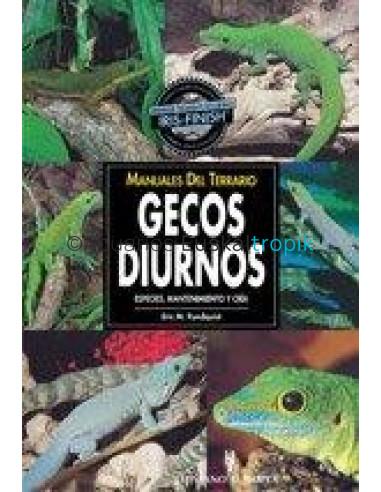 GECOS DIURNOS