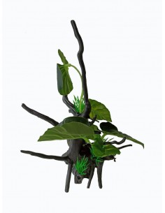 Tronco con planta S3