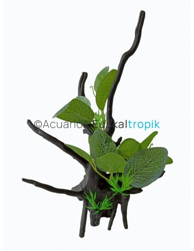 Tronco con planta s1