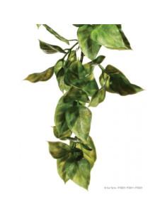 Plantas plástica colgante Amapallo