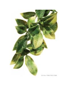 Plantas plástica colgante Mandarín