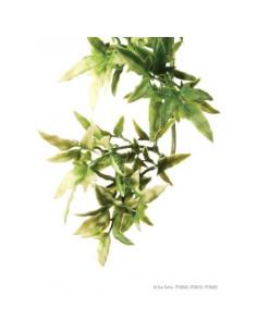 Plantas plástica colgante Croton