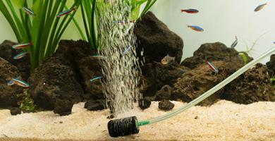 aireación en acuarios