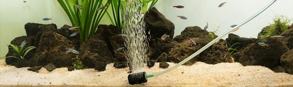 La aireación en acuarios