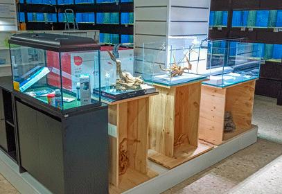 tienda fisica acuarios